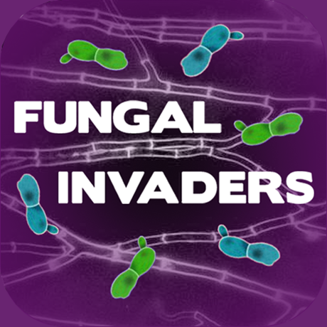 Game Doctor - Fungal Invaders game - logo